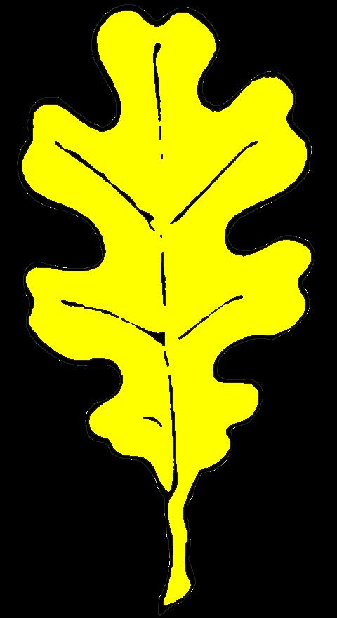 Badge - Oak Leaf